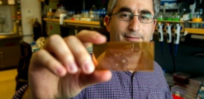 cheap type1 diabetes detection chip from Stanford
